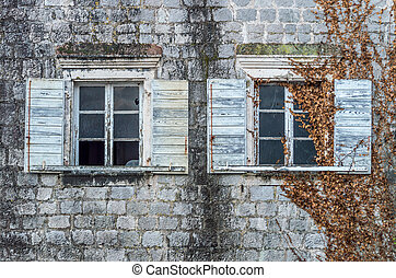Old windows covered with ivy