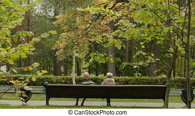 Old women talk on the bench. Autumn daytime. Smooth dolly shot