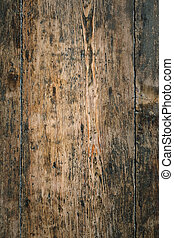 Old wood background vertical panel