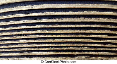 Old wood texture background. Close up wooden backgrounds. Closeup nature. Macro photography.