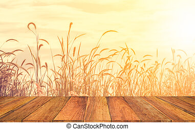 old wood texture with blur grass flower in the field background