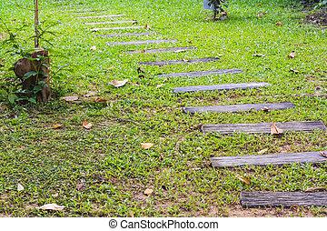 walk way in garden