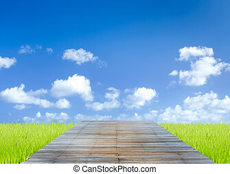 Old wood walkpath in the green field with blue sky background