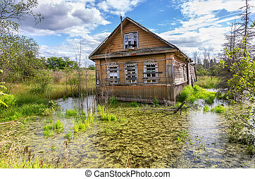 Old wooden abandoned house in a swamp