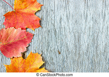 Old wooden background and  autumnal leaves