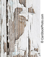 Old wooden background with white chapped paint . .
