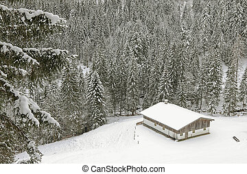 Old wooden barn in the mountain covered with snow in the forest during winter