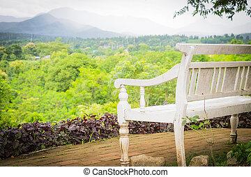 Old Wooden Bench in the garden