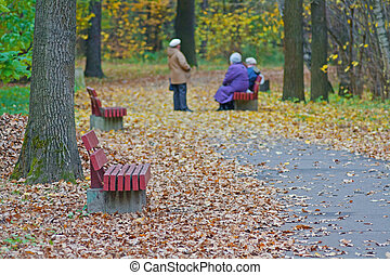 Old wooden benches on the background of walking people in autumn city park