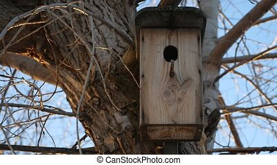 old wooden birdhouse hanging on winter tree snow landscape -...