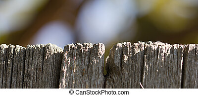 old wooden board on a background of nature