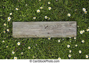old wooden board on grass with daisy