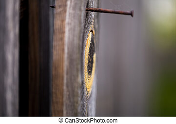 wooden Board with a rusty nail