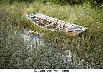 Old wooden boat in reed