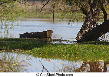 Old wooden boat under a tree on the bank of the summer river