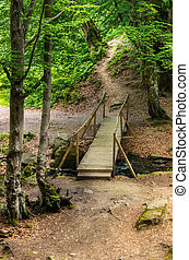 Old wooden bridge over a small river in the forest