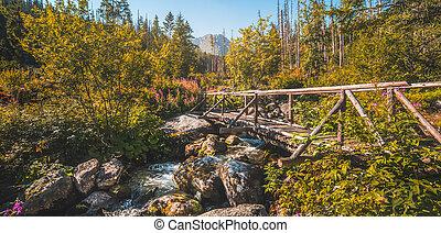 Old Wooden Bridge over Creek
