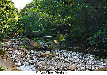 Old wooden bridge over mountain stream in the forest