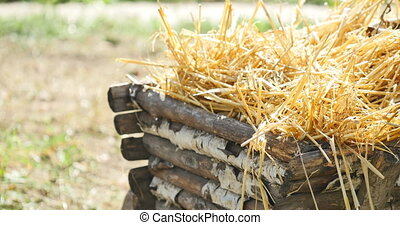 Old wooden cart with hay