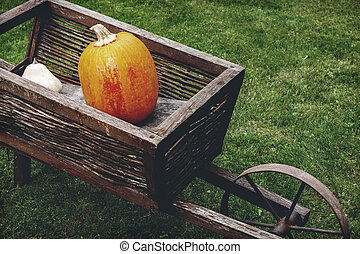 Old wooden cart with pumpkins