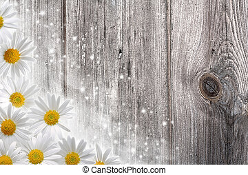 Old wooden desk and daisy flowers, abstract backgrounds