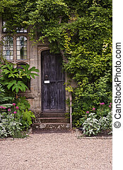 Old wooden door or stone brick house with ivy and plants at entrance