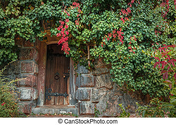 Old wooden door with a lock on an autumn day