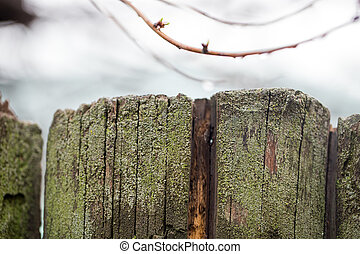 old wooden fence as background