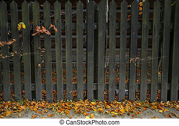old wooden fence in autumn scenery