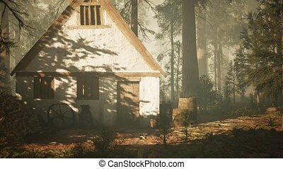 old wooden house in the autumn forest