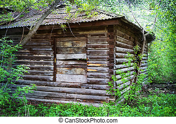 old wooden house in the wood