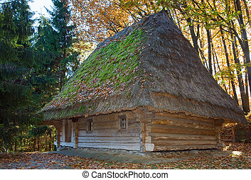 old wooden house with thatched roof