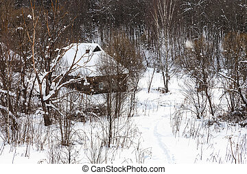 old wooden houses at the edge of forest in winter