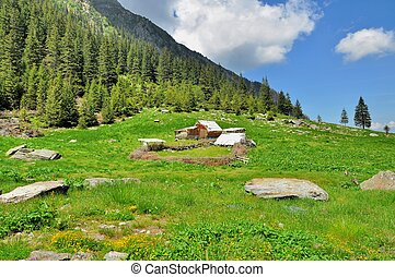 Old wooden sheepfold in mountains