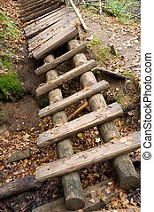 Old wooden steps in a park