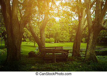 Old wooden table and benches in the garden. Picnic in the garden, Garden old wooden table and benches for relaxation.