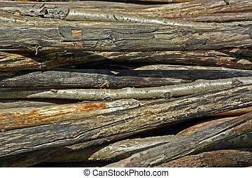 Old wooden wethered sticks