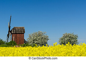Old wooden windmill surrounded of beautiful spring season colors
