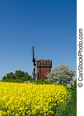 Old wooden windmill surrounded of spring season colors