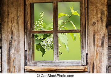 Old wooden window frame, spring, flowering trees.