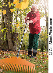 Older man while working in the garden