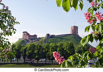 oldest Vilnius symbol - historical castle and tower of Gediminas in spring, Lithuania
