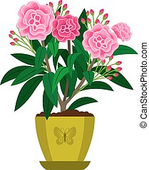 Oleander blooming houseplant in flowr pot, vector icon on...