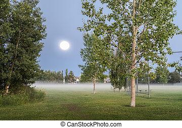 Oleskiw Park, Edmonton, Alberta