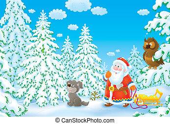 olhar, árvore, natal, santa
