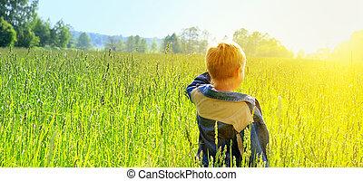 olhar, menino, jovem, horizonte, feliz