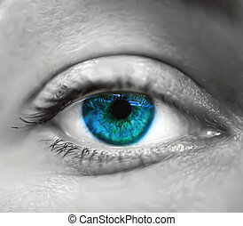 olho azul, vetorial, macro., femininas