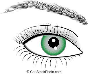 olho, de, mulher, vetorial, ilustração