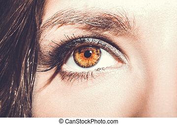 olho, makeup., olhos bonitos, compor, detalhe, cílio, extension.