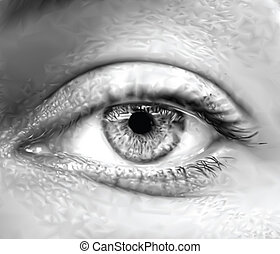 olho, vetorial, macro., cinzento, femininas